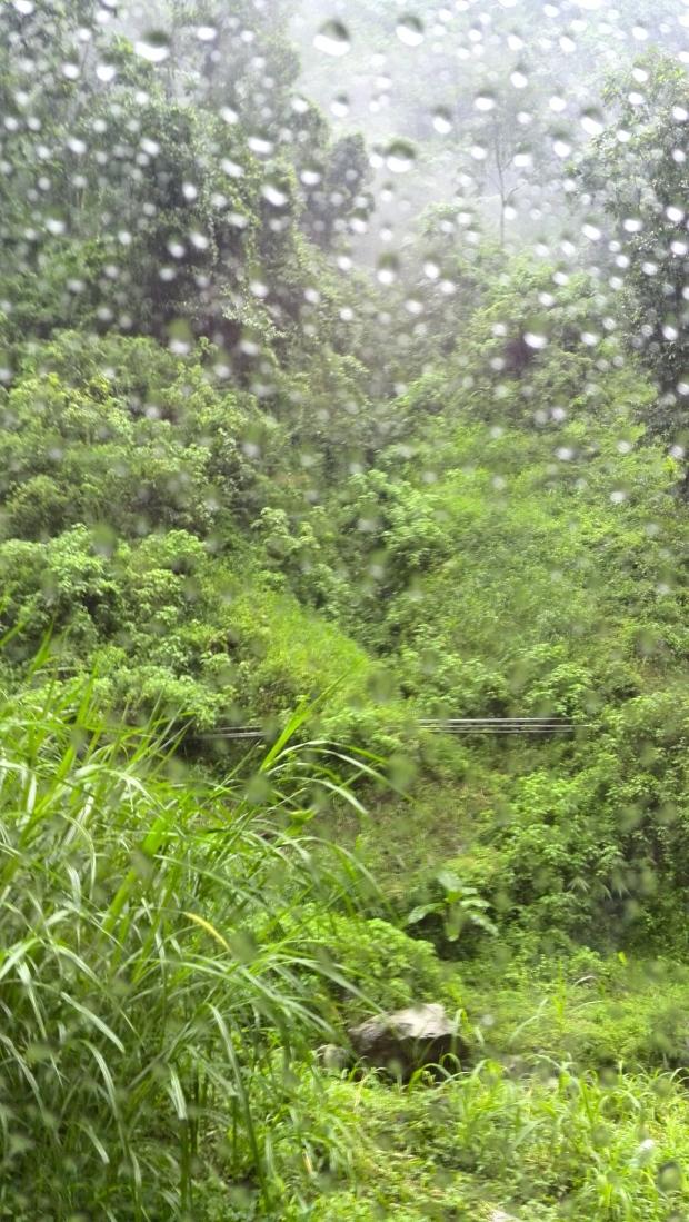 I've got this great view along the way to Madakaripura Waterfall