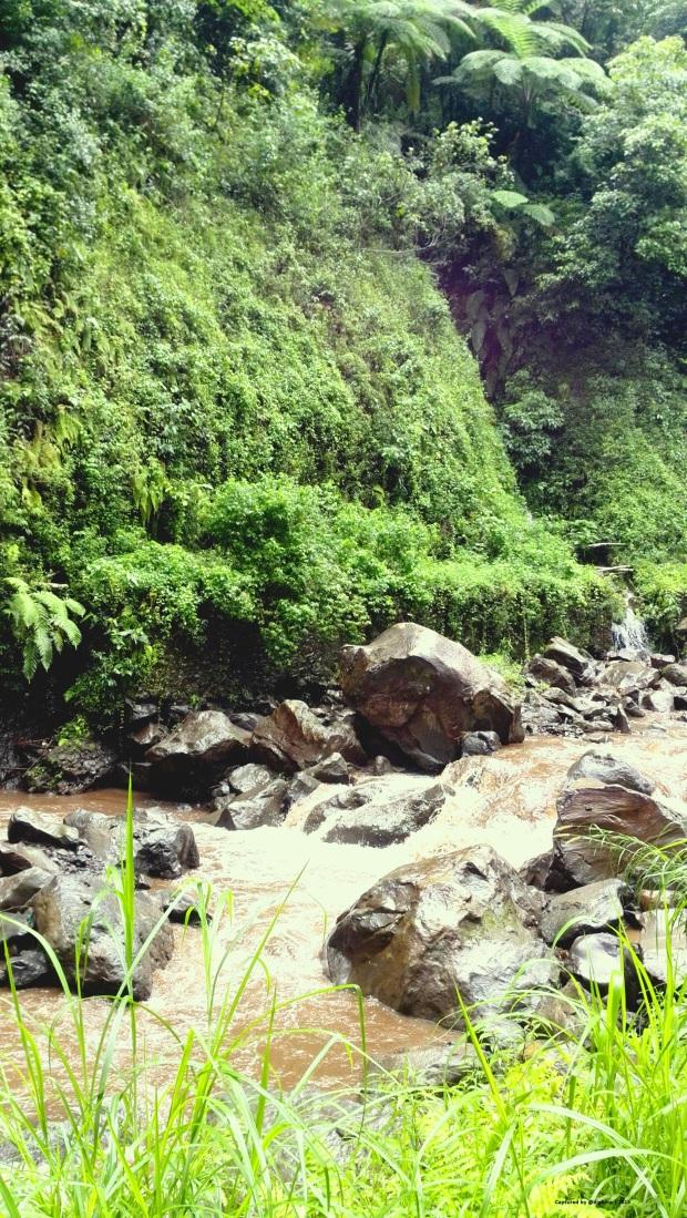 Track menuju Air Terjun Madakaripura