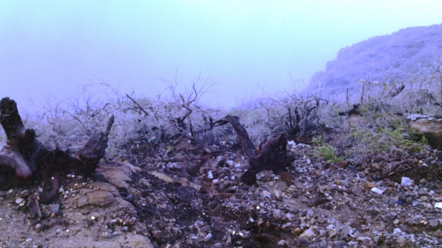 Cliff aside Ijen Crater